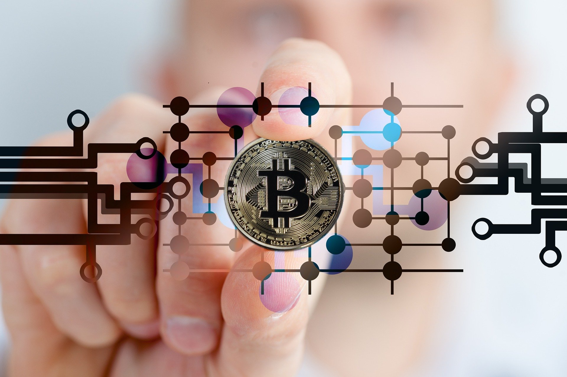 The Cryptocurrencies Digest Jul 14, 2021